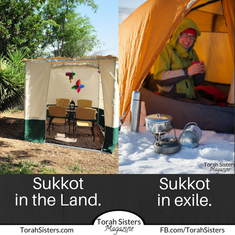 Sukkot in the Land.
