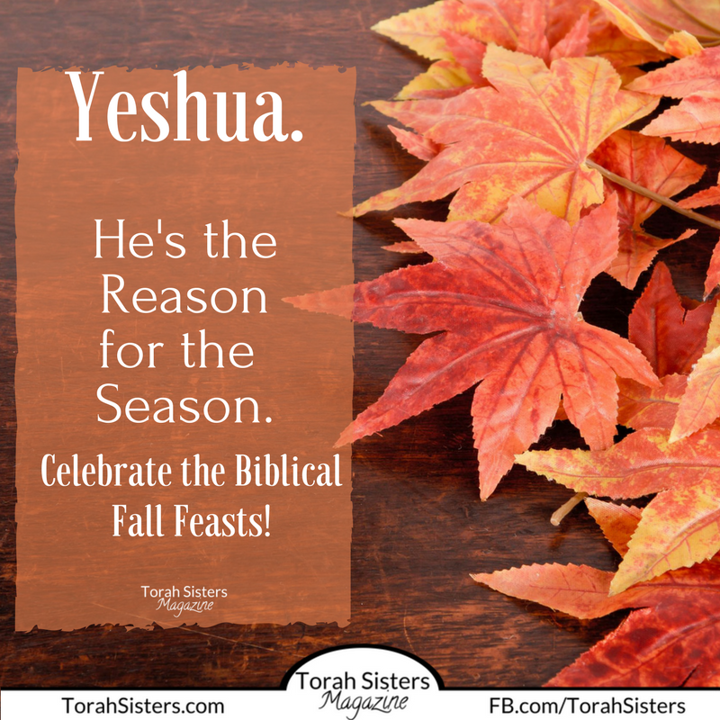 Yeshua is the Reason