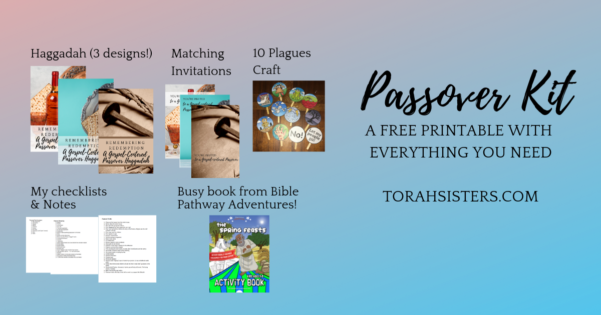 graphic regarding Printable Haggadahs named Pover Package 2019